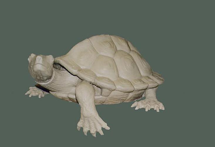 skulptur-wasserschildkroete-ton-modell